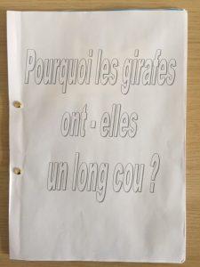 Classe de Karine Vincent et Quentin Lopez, école maternelle de Réalmont (81).