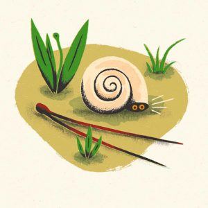 L'escargot qui ne voulait pas sortir de sa coquille