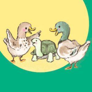La tortue et les deux canards - Une histoire du magazine Histoires pour les petits